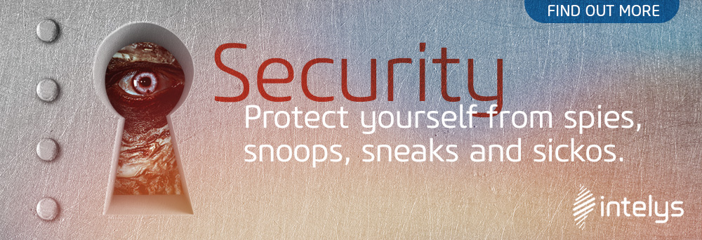 Intelys Security Banner Advert