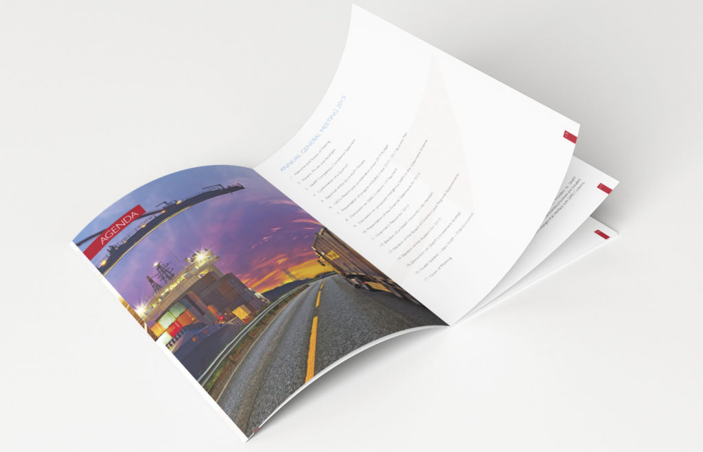 SAAFF 2014 Annual Report Design