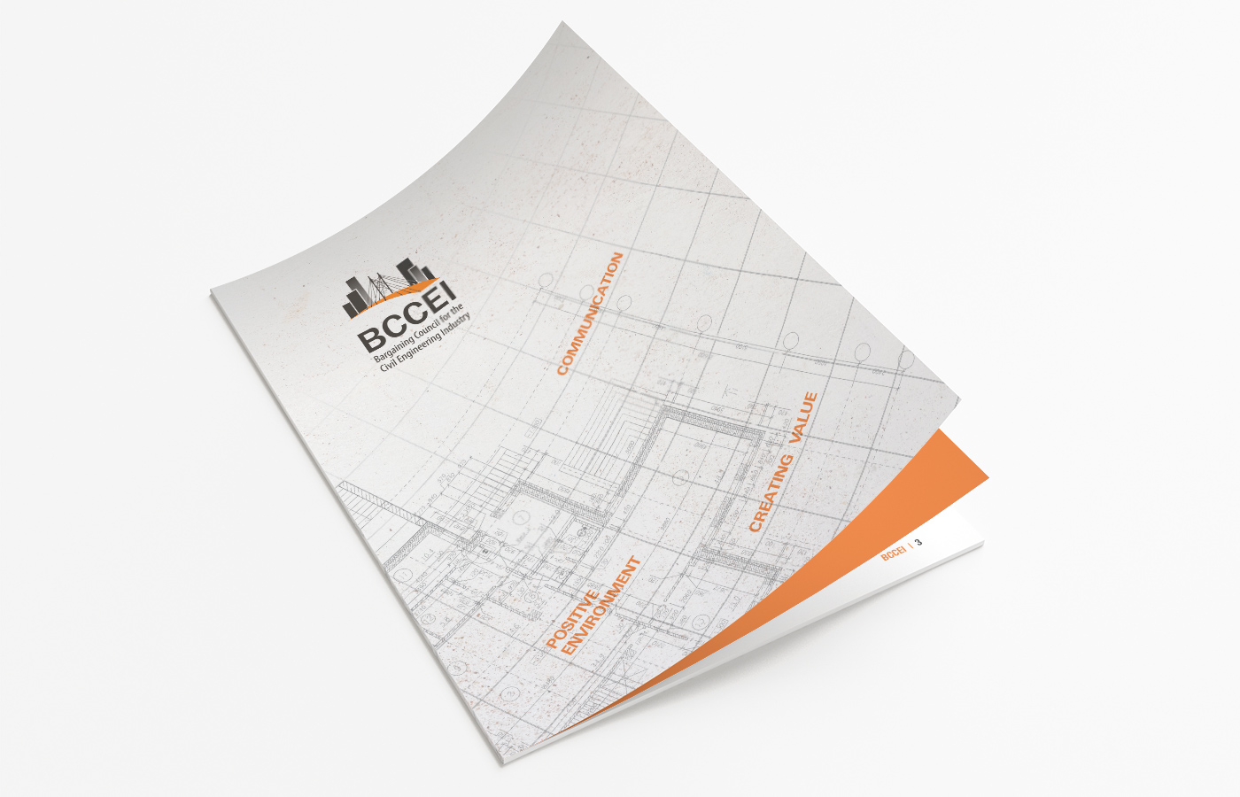 BCCEI Annual Report Design