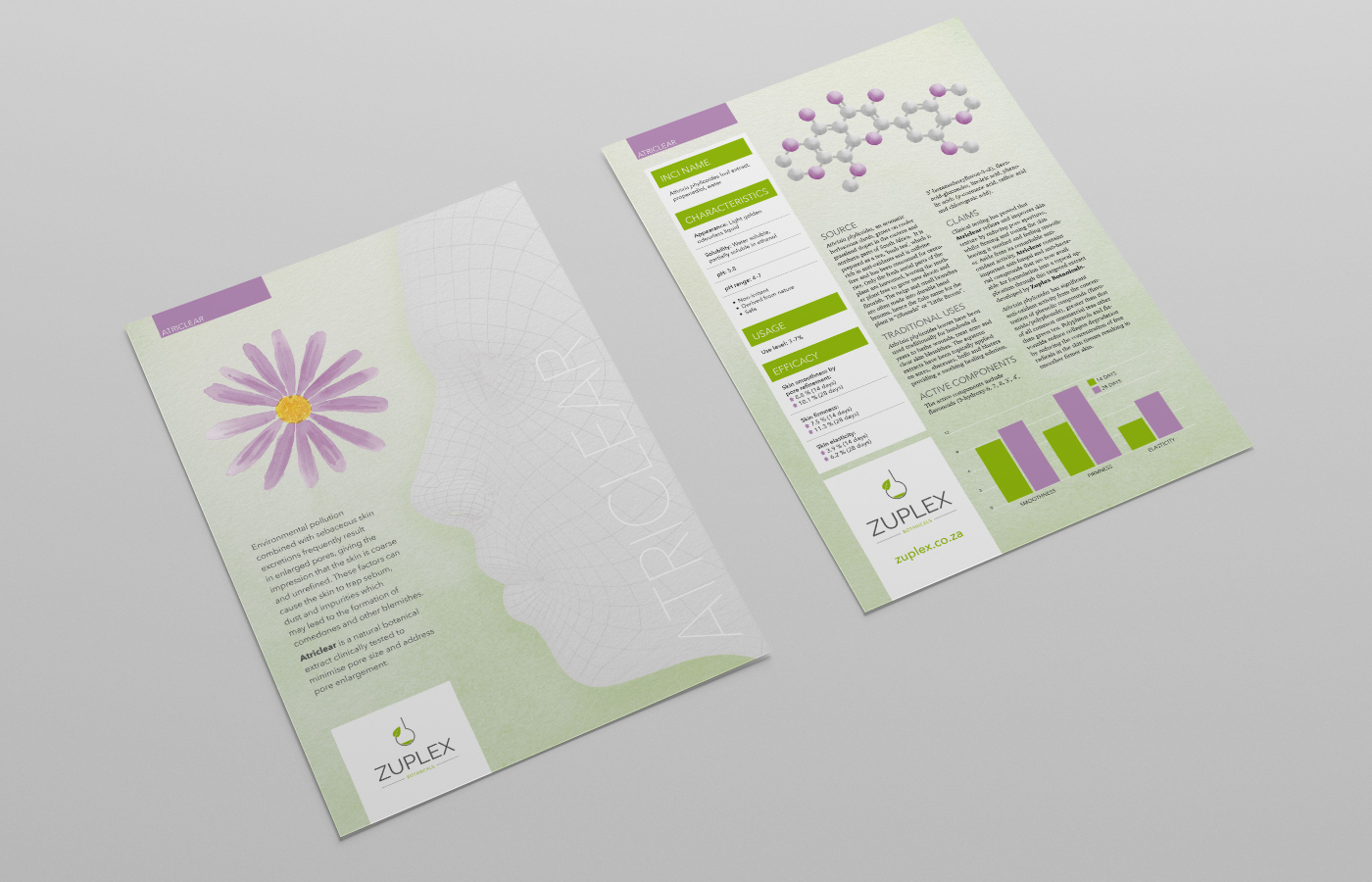 Zuplex Product Leaflet Design