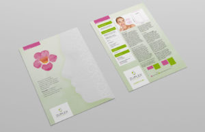 Zuplex Product Leaflet Design